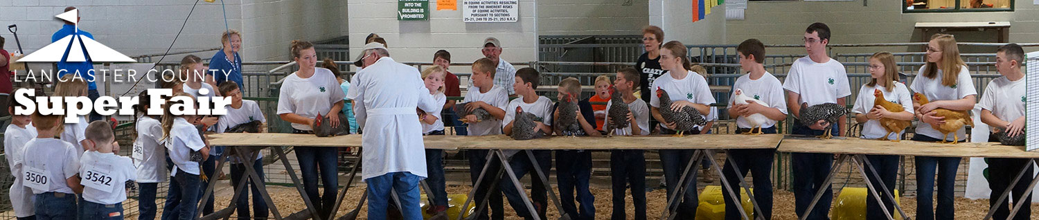 4-H Poultry Show - Lancaster County Super Fair