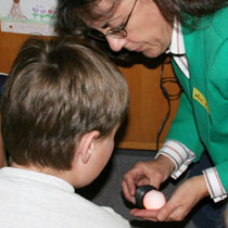 Candling Eggs in the Classroom