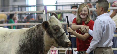 Lancaster County Fair Beef Show