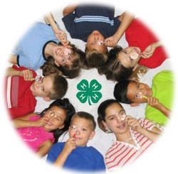 Discover 4-H. Discover You
