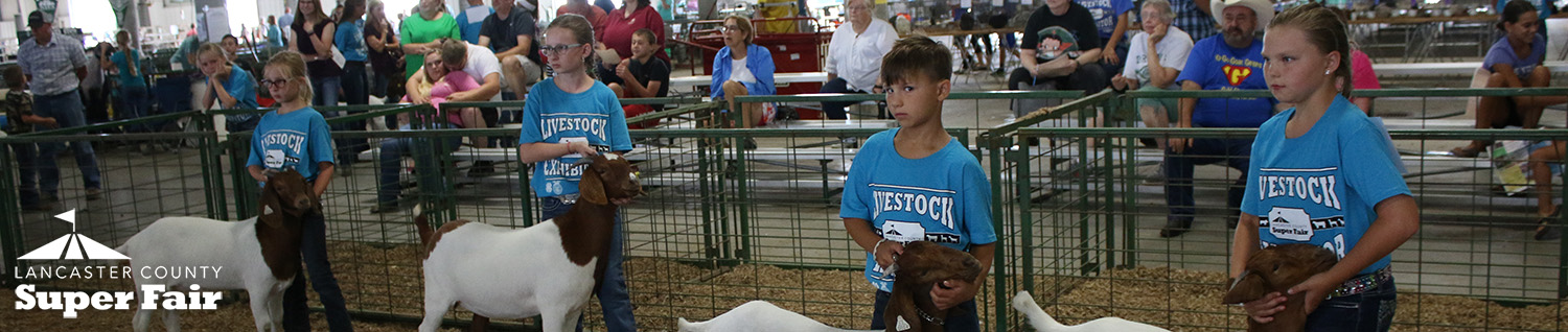 4-H Meat Goat - Lancaster County Super Fair