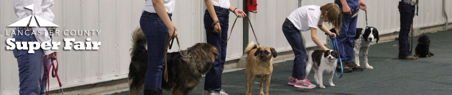 4-H Dog Show at the Lancaster County Super Fair