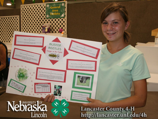 4h posters