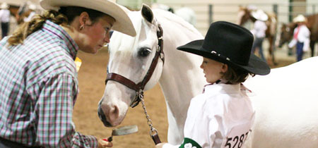 4-H Western Horse Show