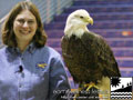 The Raptors - World Bird Sanctuary, St. Louis, Missouri