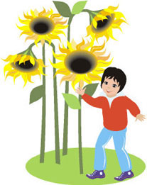 Youth Garden Activities - Fun with Plants - Science