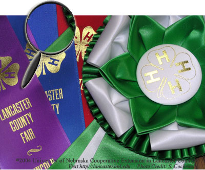 Lancaster County Fair 4-H Ribbons