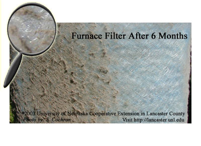Yuck - Dirty Furnace Filter