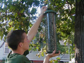Hanging a bird feeder