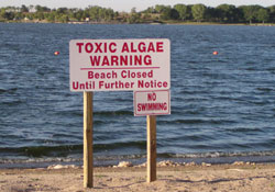 Beach Closed Sign due to Toxic Algae