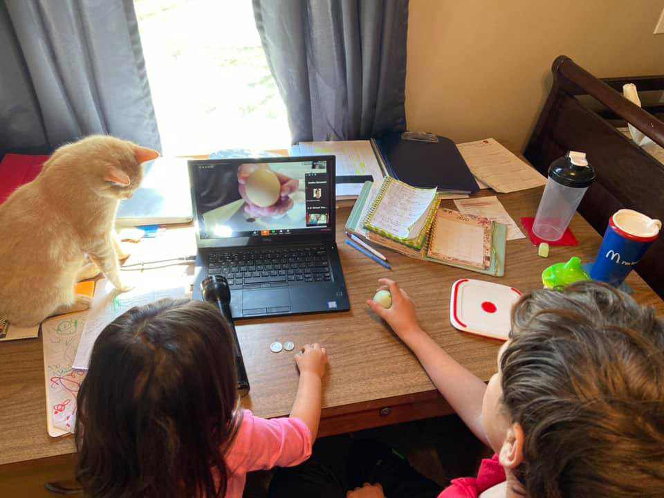 Two kids and a cat looking at a laptop