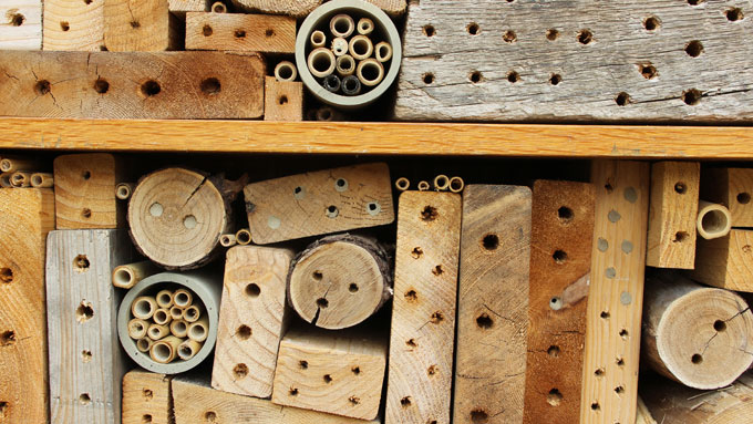 Bee Nest Boxes