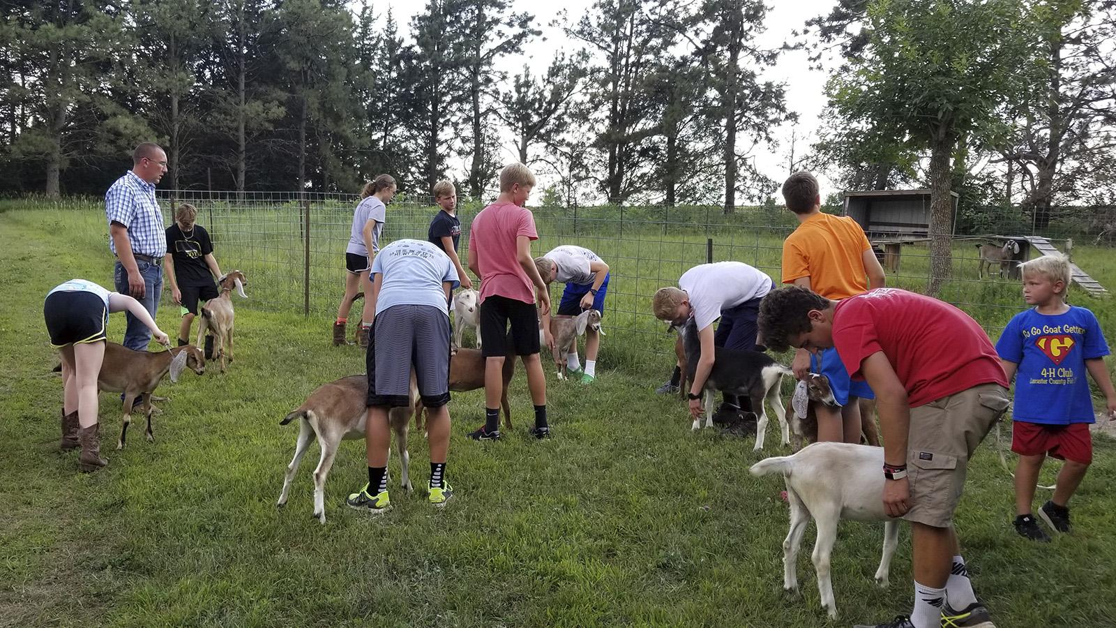 Group of youth interacting with their goats