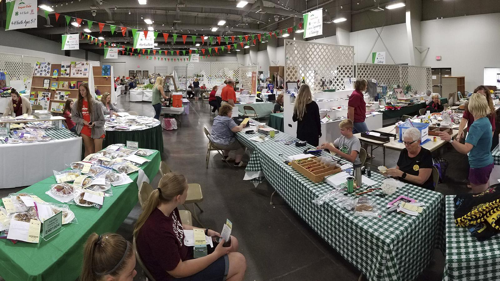 Volunteers and youth busy with exhibits at fair